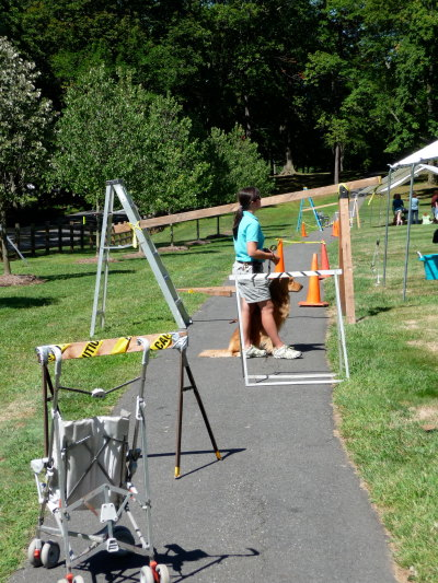 picture of Seeing Eye trainer, a dog, and an obstacle course