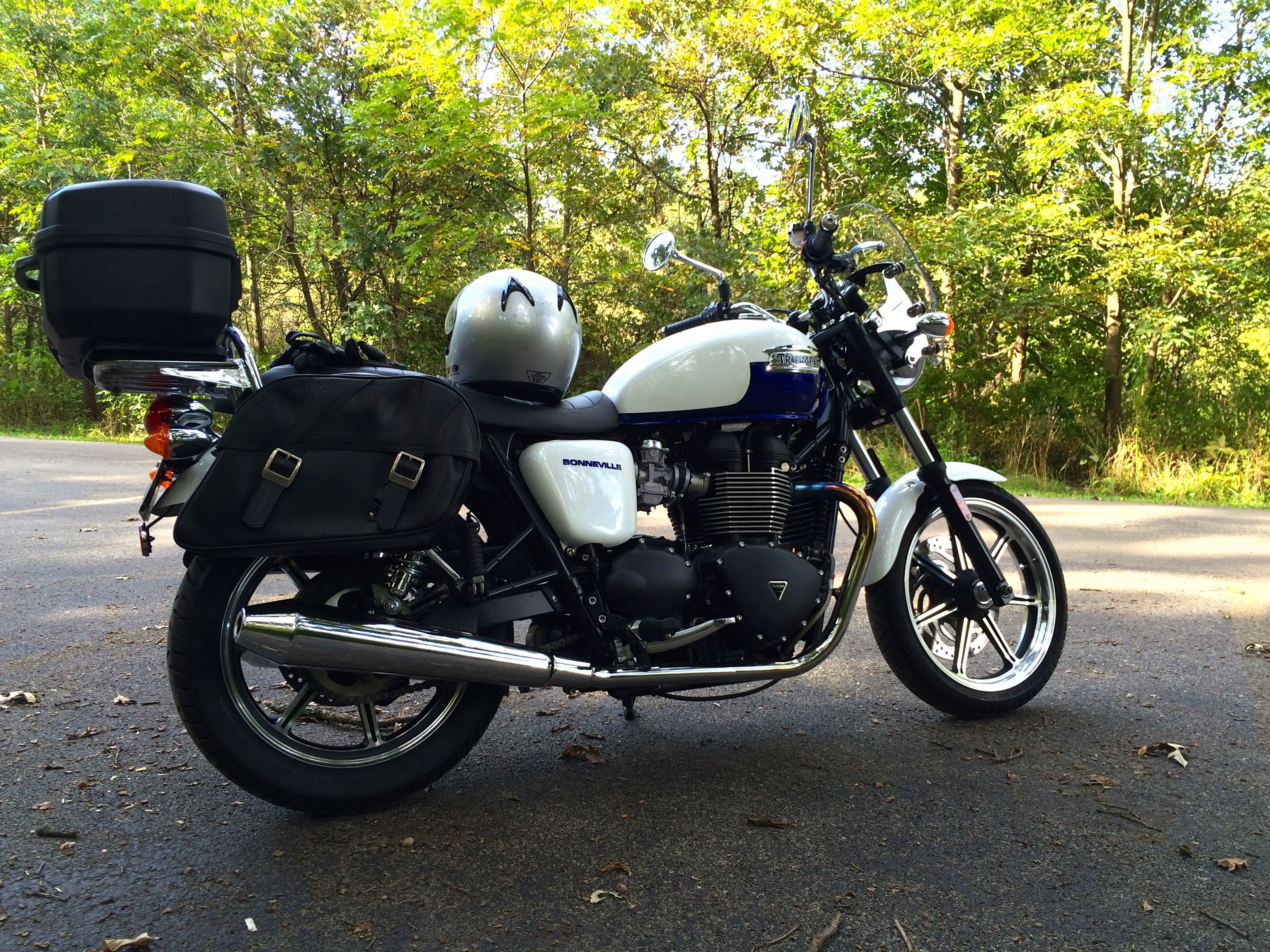 My companion last week, a Triumph Bonneville.