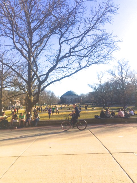 The Quad in February. Nutty.