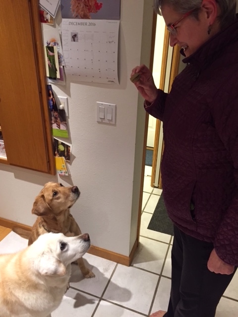 Nancy has the full attention of both the 6-year-old and the 16-year-old. Or, the treat does.