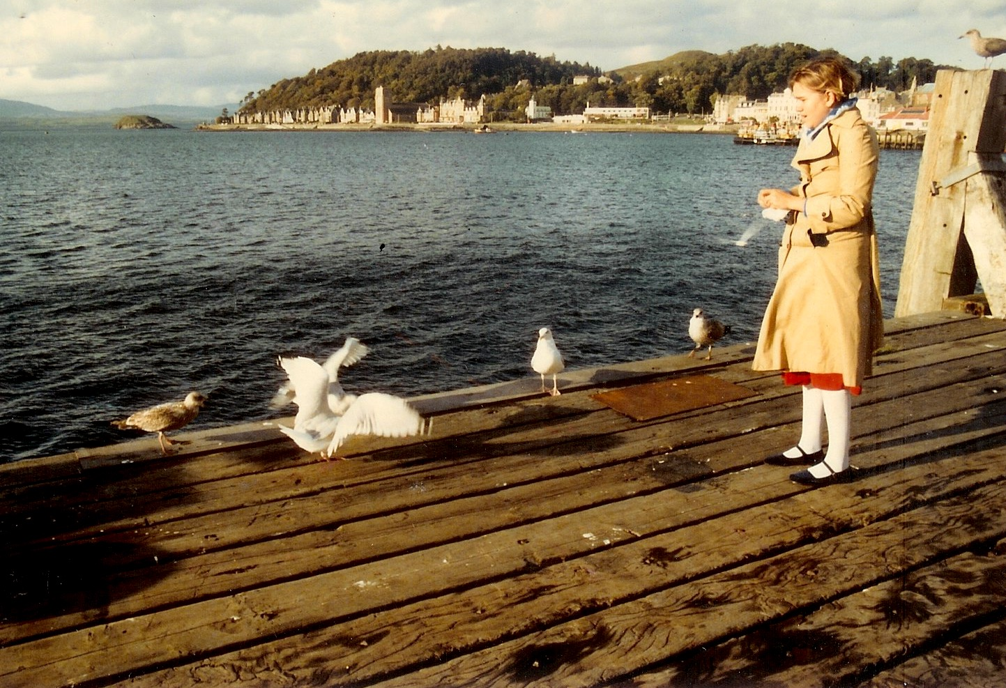 Back in 1984, we started our honeymoon in Edinburgh, and got as far as Oban, on the west coast of Scotland. Oban is on the Firth of Lorn, and Beth had fun feeding the gulls.